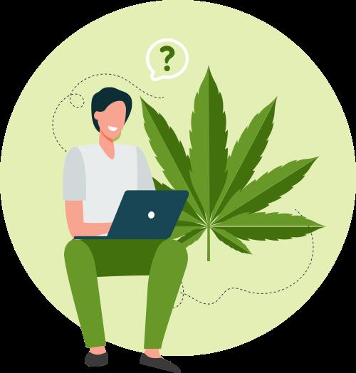 Une personne à la recherche d'information sur les enjeux du cannabis