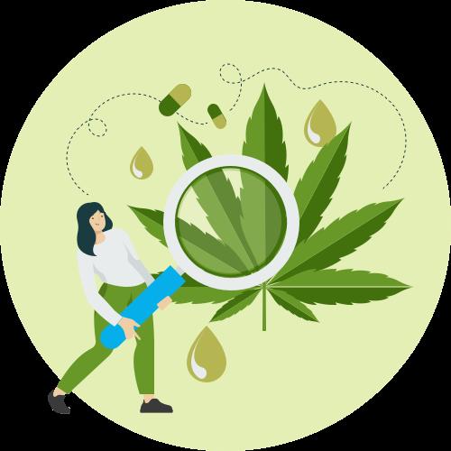 Vérifier vos connaissances sur le cannabis au travers de notre quiz.